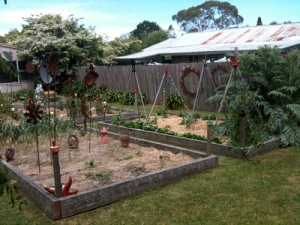 The vegetable garden at the back